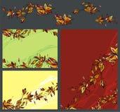 sistema del fondo de la flor Foto de archivo libre de regalías