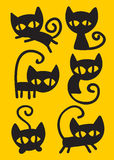 Sistema del gato negro Imagenes de archivo