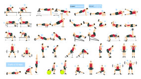 Sistema del hombre del entrenamiento libre illustration
