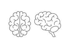Sistema del icono del cerebro en estilo plano Visi?n lateral y superior Ilustraci?n del vector imágenes de archivo libres de regalías