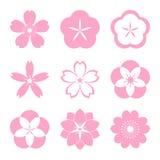 Sistema del icono de Cherry Blossom Fotos de archivo libres de regalías