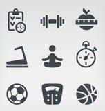 Sistema del icono de la aptitud stock de ilustración