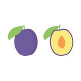 Sistema del icono de la fruta del ciruelo del vector Aislado en blanco Imágenes de archivo libres de regalías