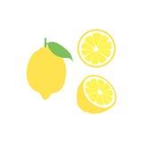 Sistema del icono de la fruta del limón del vector Aislado en blanco Fotos de archivo