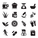 Sistema del icono de la hierba Imagen de archivo