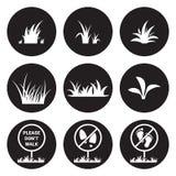 Sistema del icono de la hierba Fotografía de archivo