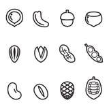 Sistema del icono de la nuez Imagen de archivo