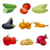 Sistema del icono de las verduras Foto de archivo