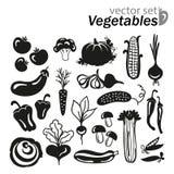 Sistema del icono de las verduras Fotografía de archivo