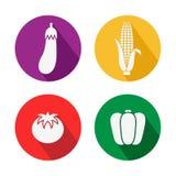 Sistema del icono de las verduras grande para cualquier uso, vector EPS10 Fotos de archivo libres de regalías