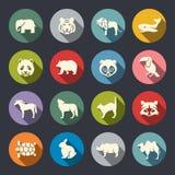 Sistema del icono de los animales Imagen de archivo
