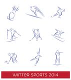 Sistema del icono de los deportes de invierno Fotografía de archivo