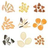 Sistema del icono de los granos de cereales Imagenes de archivo