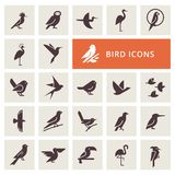 Sistema del icono de los pájaros stock de ilustración