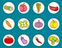 Sistema del icono del garabato de la historieta de las verduras Foto de archivo