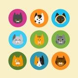 Sistema del icono del gato Fotos de archivo