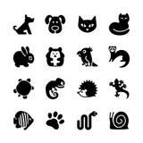 Sistema del icono del Web. Tienda de animales, tipos de animales domésticos. Imagen de archivo libre de regalías