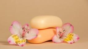 Sistema del jabón de retrete y de la flor imagen de archivo