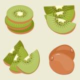 Sistema del kiwi Fruta, pedazos y rebanadas enteros Foto de archivo