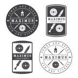 Sistema del logotipo del gimnasio en estilo del vintage Imagen de archivo libre de regalías
