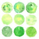 Sistema del logotipo del verde de la acuarela Imagen de archivo