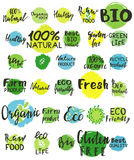 Sistema del logotipo del verde de la acuarela Imagenes de archivo