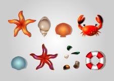 Sistema del mar de salvavidas, de cáscaras, de cangrejo, de estrellas de mar y de guijarros del mar libre illustration