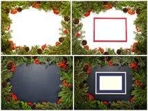 Sistema del marco de la Navidad con el árbol de abeto imperecedero, conos, acebo Imagen de archivo libre de regalías