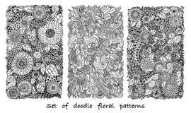 Sistema del modelo del garabato en vector con las flores y Paisley Imágenes de archivo libres de regalías