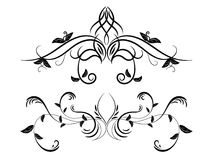 Sistema del ornamento floral blanco y negro Imagen de archivo