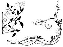 Sistema del ornamento floral blanco y negro Foto de archivo