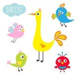 Sistema del pájaro de la historieta Personaje de dibujos animados lindo Colección divertida para los niños Diseño plano Ejemplo d Fotografía de archivo