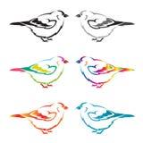 Sistema del pájaro del vector Imágenes de archivo libres de regalías