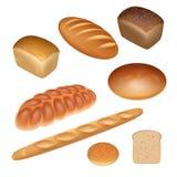 Sistema del pan stock de ilustración