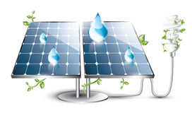 El panel solar y bombilla fluorescente Fotografía de archivo libre de regalías