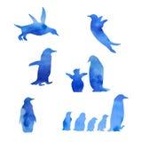 Sistema del pingüino de la acuarela Imagenes de archivo