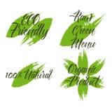 Sistema del producto orgánico, menú verde crudo, 100 naturales, ECO amistoso Fotos de archivo libres de regalías