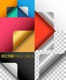 Sistema del rizo de la página del papel del vector Fotos de archivo