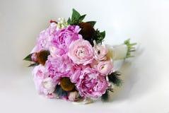 Sistema del rosa de la flor Imagenes de archivo