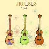 Sistema del tenor del ukelele libre illustration