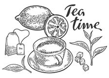 Sistema del tiempo del té Foto de archivo