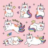Sistema del unicornio del gato Fotografía de archivo libre de regalías