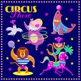 Sistema del vector de animales de circo Parte 1 Foto de archivo
