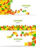 Sistema del vector de banderas coloridas de las hojas de otoño Imagen de archivo
