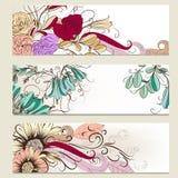 Sistema del vector de banderas horizontales del negocio con las flores Imágenes de archivo libres de regalías