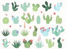 Sistema del vector de cactus y de plantas suculentas Imágenes de archivo libres de regalías