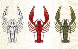 Sistema del vector de cangrejos ilustración del vector