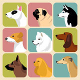 Sistema del vector de diversos iconos de los perros en estilo plano de moda Fotografía de archivo libre de regalías
