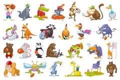 Sistema del vector de ejemplos del deporte de los animales ilustración del vector