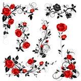Sistema del vector de elementos caligráficos decorativos del diseño con las hojas color de rosa y negras rojas del vintage para l Fotografía de archivo libre de regalías